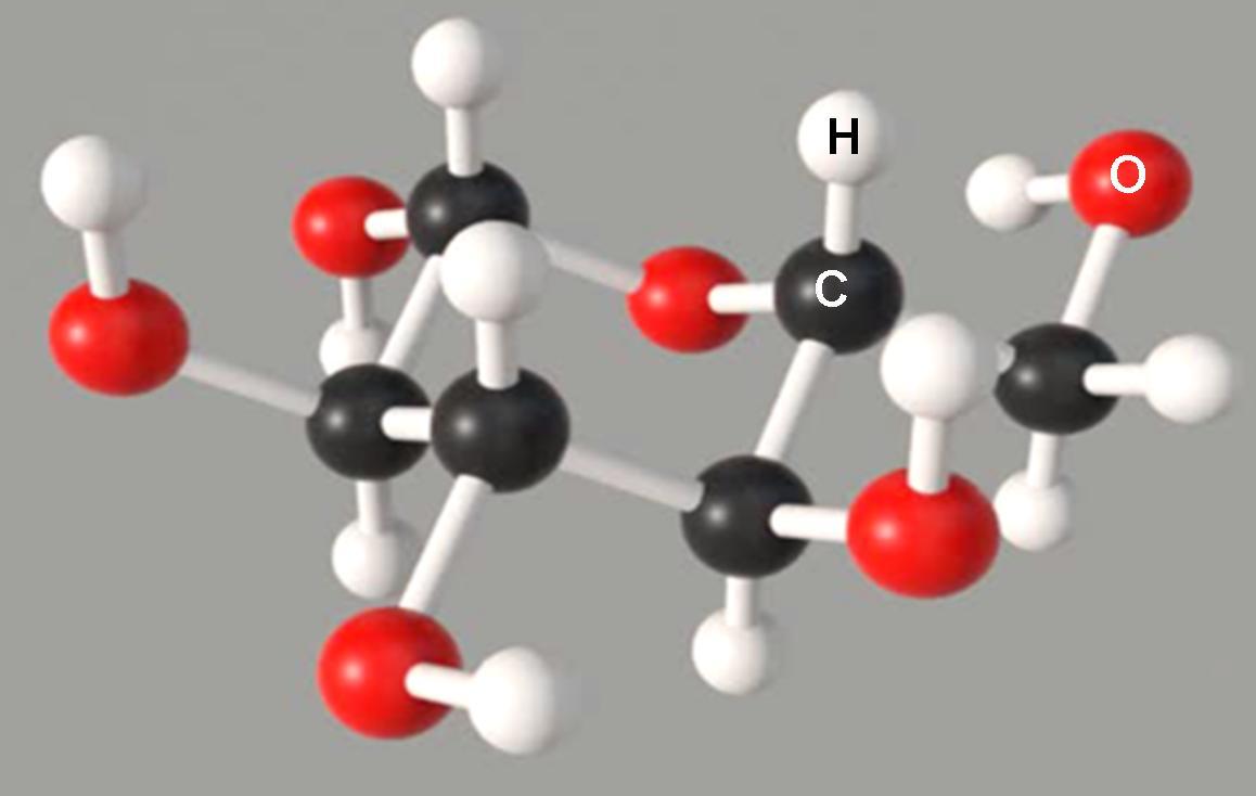 sukker molekyle